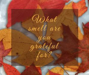gratefulness-2016